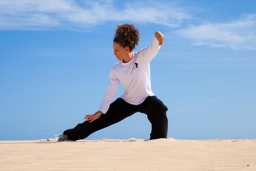 Qi Gong (DahnMuDo, Taichi) – Tai chi Classes | Meditation